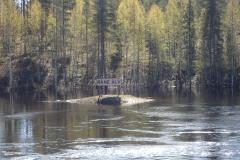 der Råne Älv führt Hochwasser