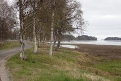 hier vom Uferradweg in Kalix habe ich freie Sicht auf die Ostsee