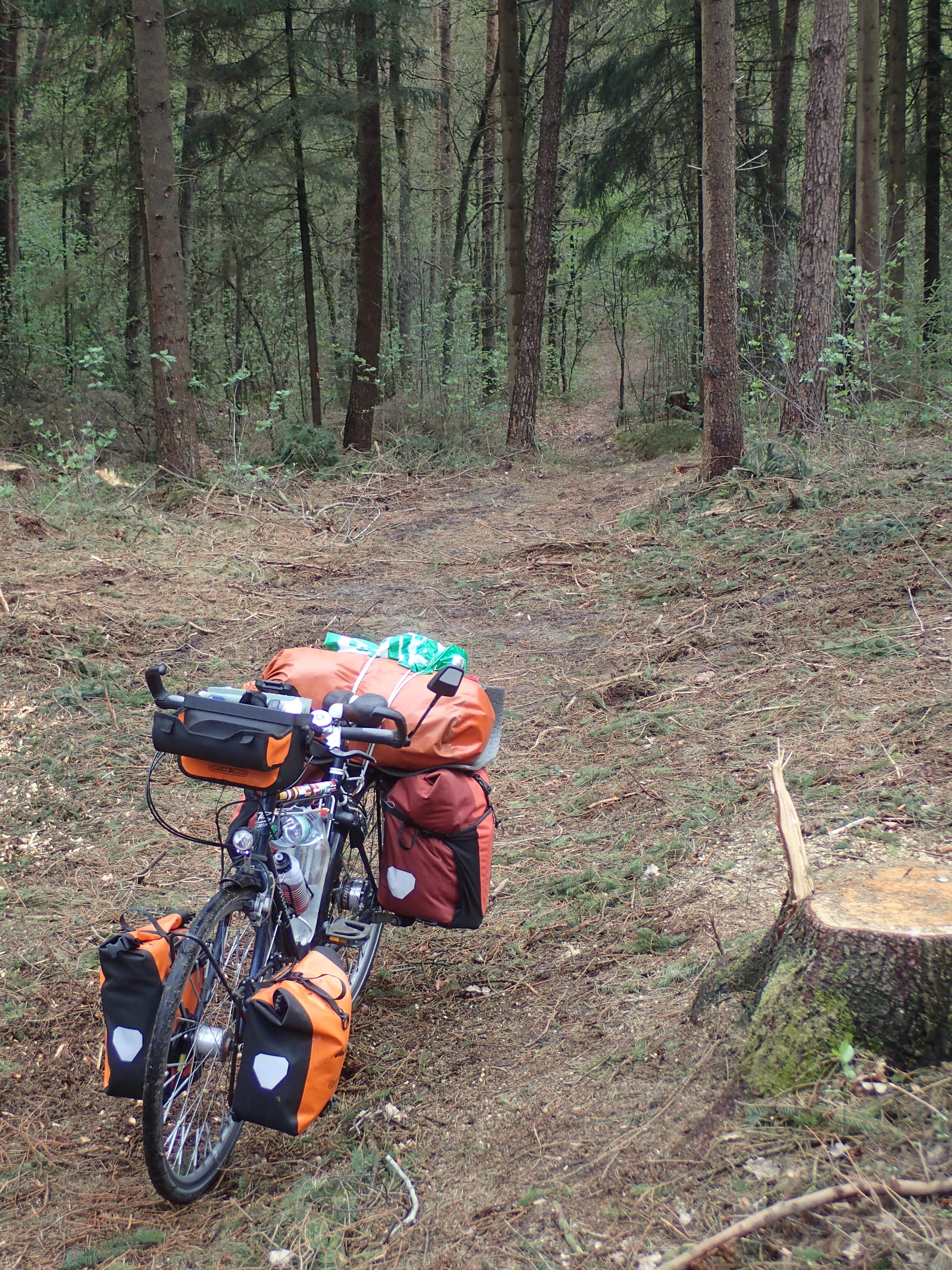 die vermeintliche Abkürzung durch den Wald