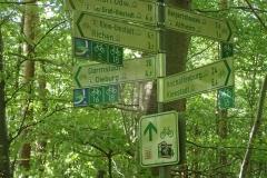 Im Wald sind die Rad-(fern-)wege sehr hilreich beschildert